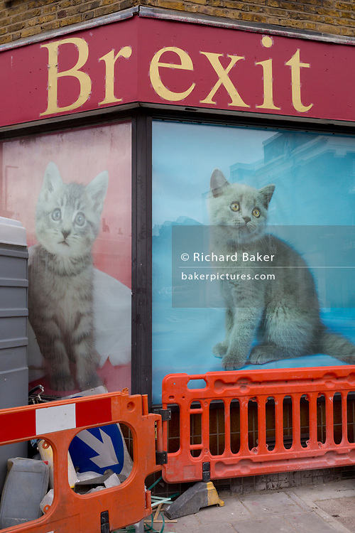 A Brexit pun using pet kittens at a closed pet shop in Greenwich, on 21st March 2019, in London, England.