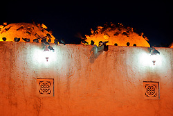QATAR DOHA 11FEB07 - Pidgeons on top of the roof of an old mosque in the Souk, Doha, Qatar...jre/Photo by Jiri Rezac..© Jiri Rezac 2007