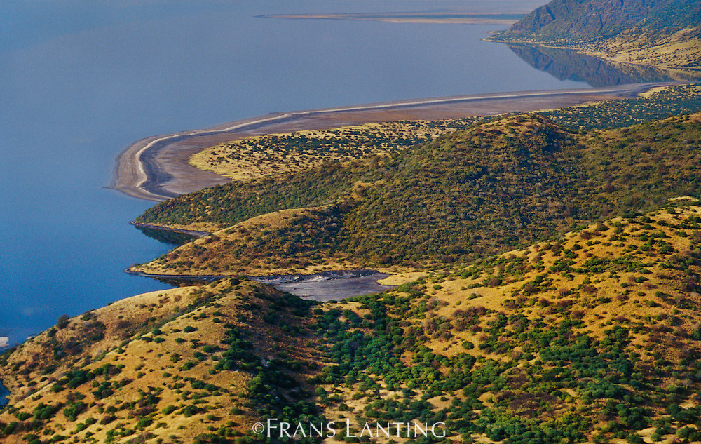 Great Rift Valley shoreline (aerial), Lake Natron, Tanzania