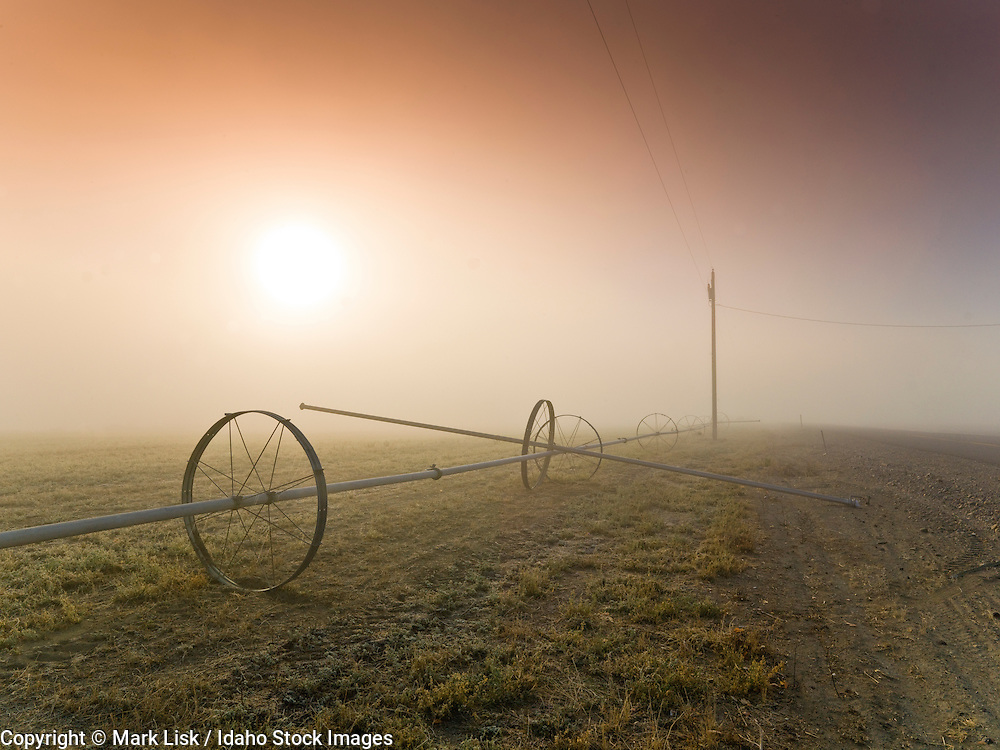 The morning sun pokes through a thick layer of fog, Roswell, Idaho.