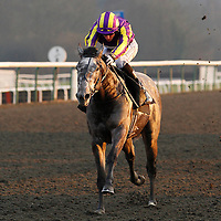 Equation Of Time and Martin Lane winning the 4.35 race