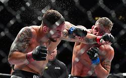 "Nov 12, 2016 - New York, New York, U.S. - Frankie Edgar ""The Answer"" (red gloves) vs. Jeremy ""Lil' Heathen"" Stephens  (blue gloves) during UFC 205 at Madison Square Garden. (Credit Image: © Jason Silva via ZUMA Wire)"
