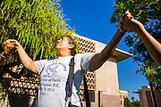 21 JUNE 2012 - PHOENIX, AZ: ROSA MARIA SOTO, from Glendale, AZ, prays in front of the State Capitol Thursday while she and other members of PAZ wait for the US Supreme Court to issue a decision in US v. Arizona. About 40 people, members of the immigrant rights' group Promise AZ (PAZ), gathered at the Capitol in Phoenix to wait for the US Supreme Court decision on SB 1070, Arizona's controversial anti-immigrant law, in the case US v. Arizona. The court's ruling is expected sometime later this month. Members of PAZ said they would continue their vigil until the ruling was issued.         PHOTO BY JACK KURTZ