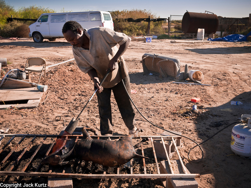 30 OCTOBER 2010 - PHOENIX, AZ: IBRAHIM SWARA-DAHAB singes the hair off a goat he just slaughtered at the Goat Meat Store, owned by Ibrahim Swara-Dahab, in Phoenix, AZ. Swara-Dahab came to the United States from Somalia in 1998. He has built a thriving business as a Halal butcher and provides freshly butchered goats and sheep killed following the precepts of Muslim tradition. His business not only caters to Muslims in the Phoenix area but also to refugees and immigrants from Africa and Asia. His small butcher shop is on the Gila River Indian Reservation, about 100 yards from the Phoenix city limits and doesn't have either running water or electricity.    Photo by Jack Kurtz