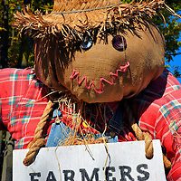 Scarecrow at Granville Farmers Market in Vancouver, Canada<br />