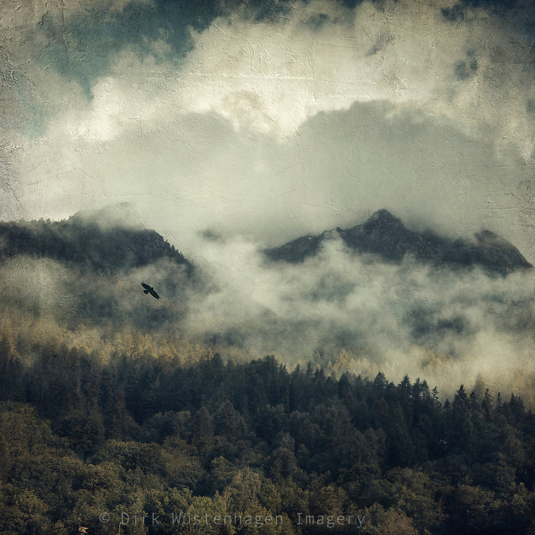 Forest and mountain with clouds - texturized photograph
