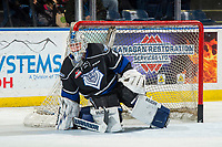 KELOWNA, CANADA - JANUARY 25: Brock Gould #1 of the Victoria Royals warms up in net against the Kelowna Rockets  on January 25, 2019 at Prospera Place in Kelowna, British Columbia, Canada.  (Photo by Marissa Baecker/Shoot the Breeze)