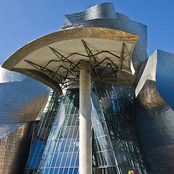 Guggenheim Architecture