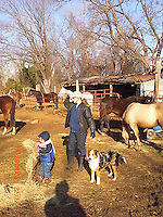 Dante and Jocelyn with the horses and other animals at her ranch.Photo Credit; Rahav Segev/Photopass