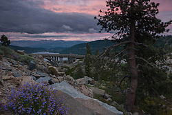 """Donner Lake Sunset 16"" - Photograph of penstemon wildflowers and Rainbow Bridge at sunset above Donner Lake in Truckee, California."