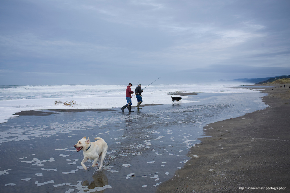 fishermen walk in the ocean waves as they fish in the early morning in Neskowin, Oregon, a labrador plays on the beach with them.