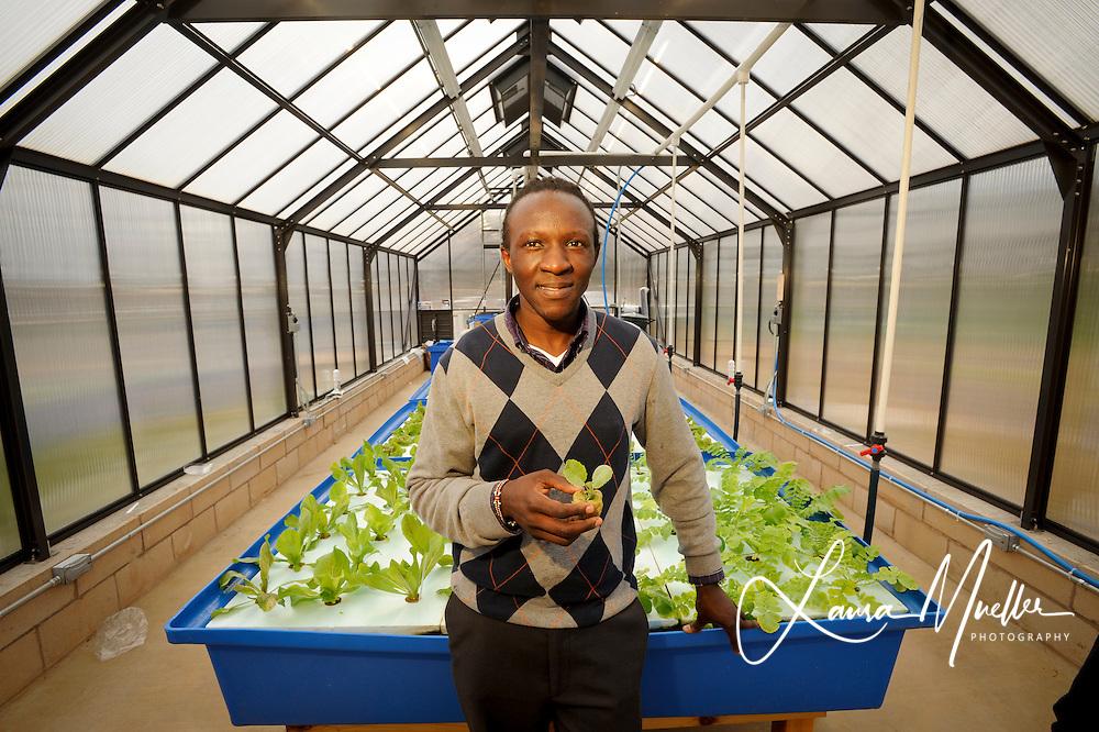 Johnson C. Smith University Biology Professor Philip Otienoburu and student Christophe Fatton, 22, tend to the University's auquaponic garden.<br /> photo by Laura Mueller www.lauramuellerphotography.com