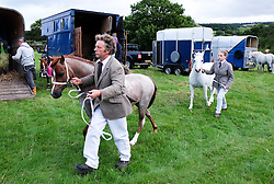 © Licensed to London News Pictures.26/08/15<br /> Egton, UK. <br /> <br /> Ponies are walked up to the main arena before competing at the 126th Egton Show in North Yorkshire. <br /> <br /> Egton is one of the largest village shows in the country and is run by a band of voluntary helpers. <br /> <br /> This year the event featured wrought iron and farrier displays, a farmers market, plus horse, cattle, sheep, goat, ferret, fur and feather classes. There was also bee keeping, produce and handicrafts on display.<br /> <br /> Photo credit : Ian Forsyth/LNP