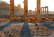 Columns of the Great Colonnade in front of the Valley of the Tombs, Palmyra, Syria. Ancient city in the desert that fell into disuse after the 16th century.