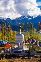 Stupas draped with prayer flags in Choglamsar in the Leh Valley, Ladakh, Jammu and Kashmir State, India. The five colors of the prayer flags represent the five elements: blue for sky, white for wind, red for fire, green for water, and yellow for earth.