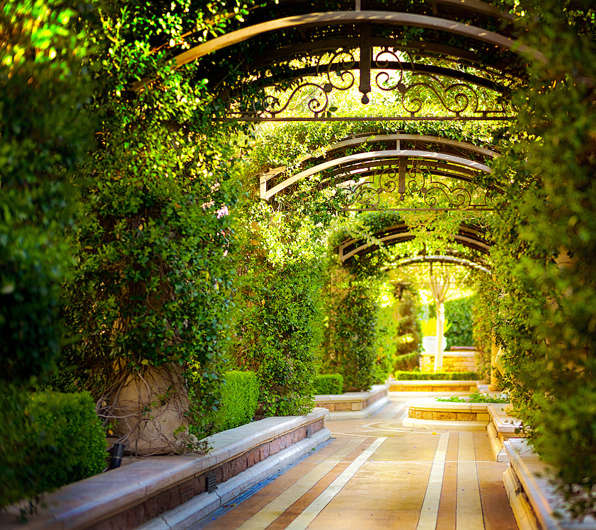 Las Vegas &amp; Botanical Gardens ... exquisite, beautiful, peaceful, colorful, elegant ... and full of magical images. <br />