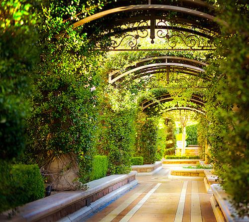 Exceptionnel Las Vegas U0026 Botanical Gardens ... Exquisite, Beautiful, Peaceful, Colorful,