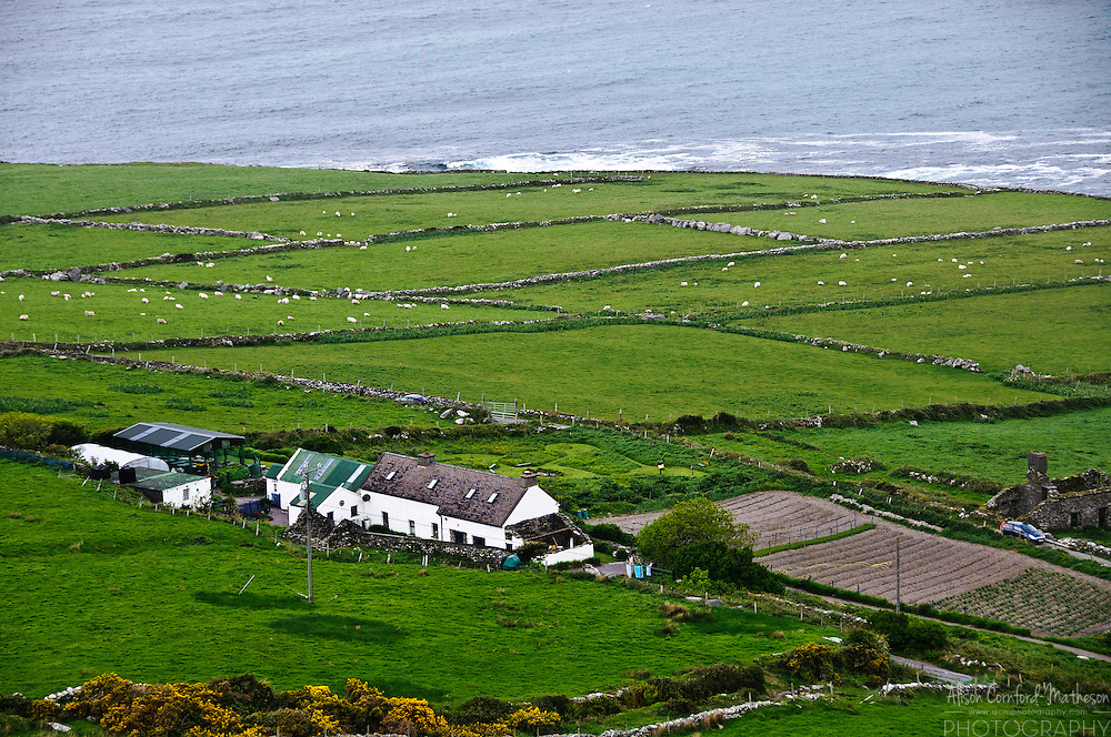View of the Atlantic Coast from Gortgower, Valentia Island, County Kerry, Ireland.
