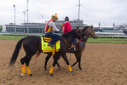 Derby 142 hopeful Danzing Candy with Rolando Quinones up were on the track for training, Tuesday, May 03, 2016 at Churchill Downs in Louisville.