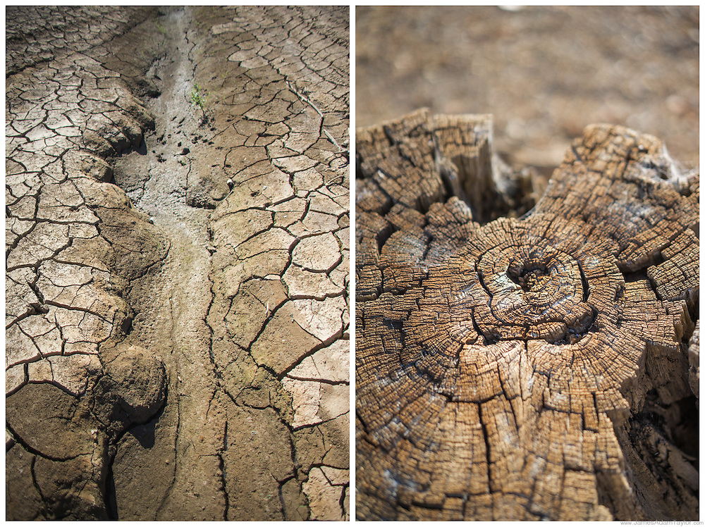 State of drought, August 2015, Trinity Lake, Trinity County, California.