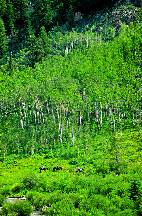 Horseback riding near Ashcroft (outside Aspen), Colorado USA