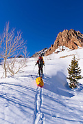 Backcountry skier heading up Piute Pass, Inyo National Forest, Sierra Nevada Mountains, California