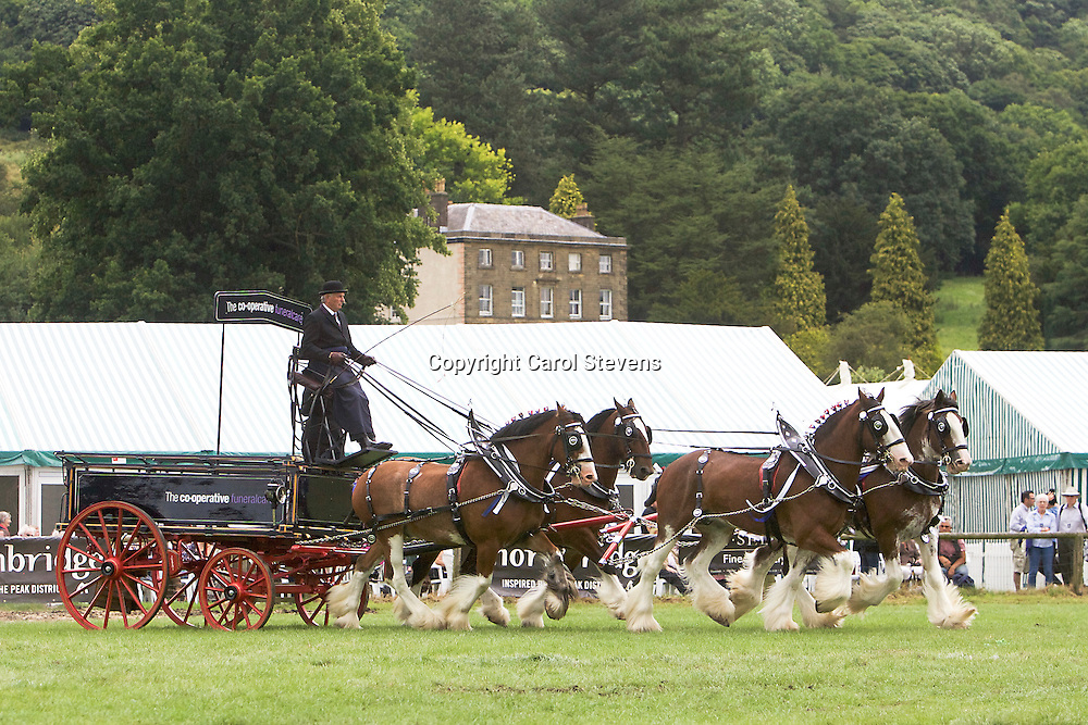 Gawin Holmes driving his own Clydesdales, Sorbie, I, Jake and John B<br />