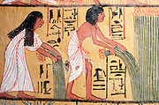 EGYPT, WEST BANK, THEBES Tomb of Sennedjem; harvesting laru