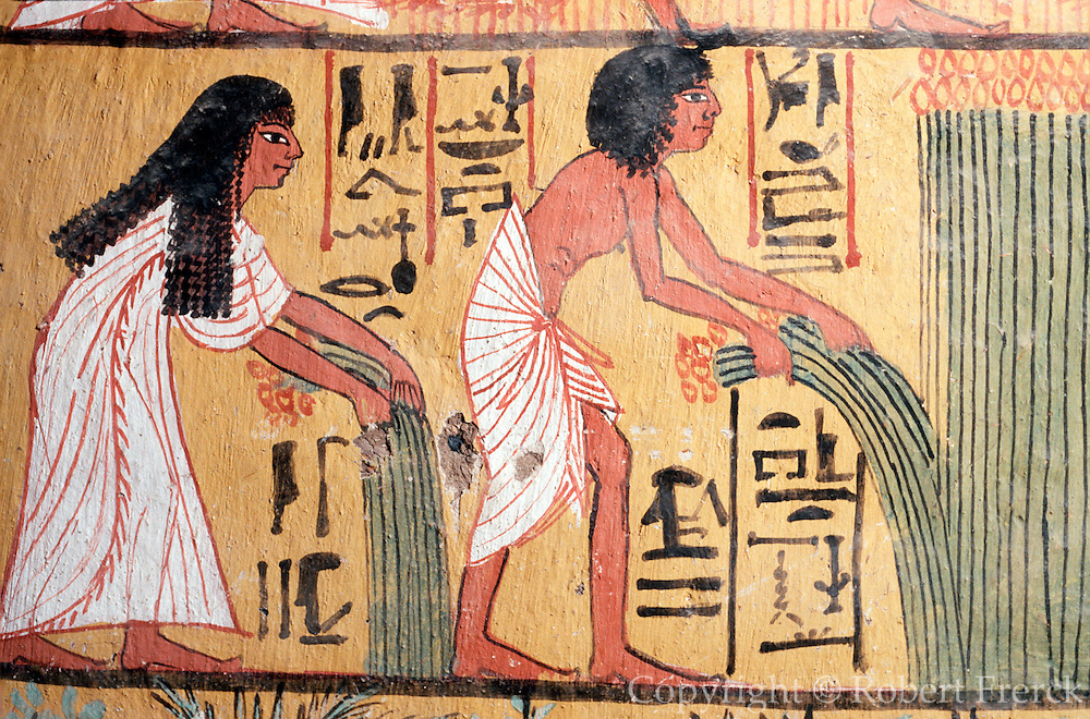 EGYPT, WEST BANK, THEBES Tomb of Sennedjem; harvesting laru