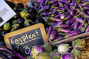 Locally grown baby eggplant on display at the Farmers Market along Main Street in downtown Greenville, South Carolina.
