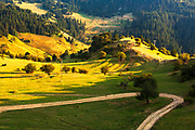 Picturesque green mountain meadows in summer time