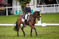 7 year old horses - Mondial du LMion 2019