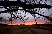 Sunset along forest service road 92 in the foothills of the Santa Rita Mountains of the Coronado National Forest in the Sonoran Desert north of Sonoita, Arizona, USA.