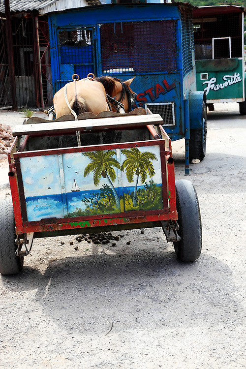 Horse and cart behind beer wagons in Santa Cruz del Norte, Mayabeque, Cuba.