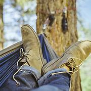 Campsite hammock. Mammoth Lakes, CA   G-Project Gear