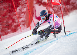 02.12.2018, Beaver Creek, USA, FIS Weltcup Ski Alpin, Beaver Creek, Riesenslalom, Herren, 1. Lauf, im Bild Tommy Ford (USA) // Tommy Ford of the USA in action during his 1st run of men's Giant Slalom of FIS ski alpine world cup in Beaver Creek, United States on 2018/12/02.12.2018. EXPA Pictures © 2018, PhotoCredit: EXPA/ Johann Groder