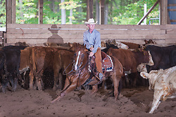 September 24, 2017 - Minshall Farm Cutting 6, held at Minshall Farms, Hillsburgh Ontario. The event was put on by the Ontario Cutting Horse Association. Riding in the $25,000 Novice Horse Class is Brian Kelly on The Reyl Slim Shady owned by Eric Bouchard.