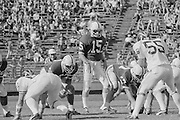 COLLEGE FOOTBALL: Stanford vs University of Washington played on October 19, 1974 at Stanford Stadium in Palo Alto, California.  Stanford quarterback Jerry Waldvogel #15 prepares to take the snap from center Rudy Bergthold. #57.