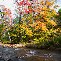 Fall color along the Swift River, Tamworth, NH