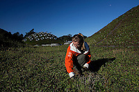 SAN FRANCISCO, CA - OCT 26:  Kendra Hauser, Landscape Exhibits Assistant works on the living roof on top of the California Academy of Sciences building in Golden Gate Park on October 26, 2010 in San Francisco, California. San Francisco was recently rated the second greenest US city overall, narrowly beaten by Portland Oregon. The Living Roof´s 1.7 million native plants were specially chosen to flourish in Golden Gate Park´s climate.  After experimenting with thirty native species, the finalists were all able to self-propagate. They will thrive with little water, resist the salt spray from ocean air, and tolerate wind.  The roof will provide habitat for a wide variety of wildlife. A future project will seek to introduce the endangered San Bruno elfin butterfly and the Bay checkerspot butterfly to this new habitat.  Photography by David Paul Morris