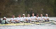 Putney, GREAT BRITAIN,   during the  2009 Boat Race,  Rowing 'Championship Course' Putney to Mortlake, on the River Thames, Sun.29.03.2009. [Mandatory Credit, Peter Spurrier / Intersport-images].. Cambridge Crew, Bow Rob WEITEMEYER, Henry PELLY, Tom RANSLEY, Peter MARESLAND, Deaglan McEACHERN, Hardy CUBASCH, Ryan MONAGHAN, Silas STAFFORD and cox Rebbecca DOWBIGGIN. Rowing Course: River Thames, Championship course, Putney to Mortlake 4.25 Miles,