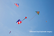63495-02704 Kites flying at Flagler Beach Flagler Beach, FL