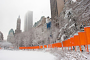 Central Park. New York, New York. United States..February 21st 2005..Art project The Gates by Christo and Jeanne Claude..7503 gates, 16,4 feet high, on 22 miles in Central park, $ 21 millions, 750 employees.