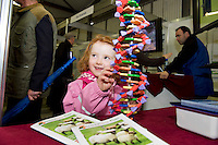 "5 year old Jennifer Conlon from Castlebaldwin Co. Sligo looking at DNA model at Sheep 2012 ""The Way Forward""  at Teagasc, Mellows Campus, Athenry, Co. Galway Photo: Andrew Downes.."