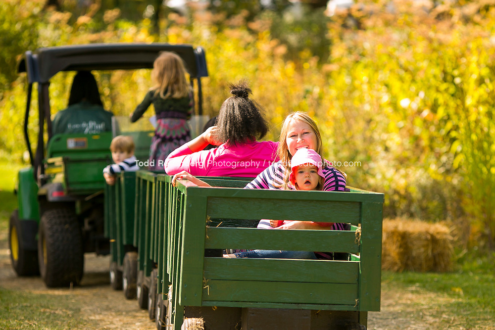 10/10/15 1:42:14 PM -- Chicago, IL, USA<br /> <br /> Lincoln Park Zoo Fall Festival <br /> <br /> . &copy; Todd Rosenberg Photography 2015