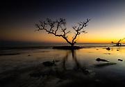 Twilight landscape, in Bahia Honda State Park, Big Pine Key, Florida Keys, USA