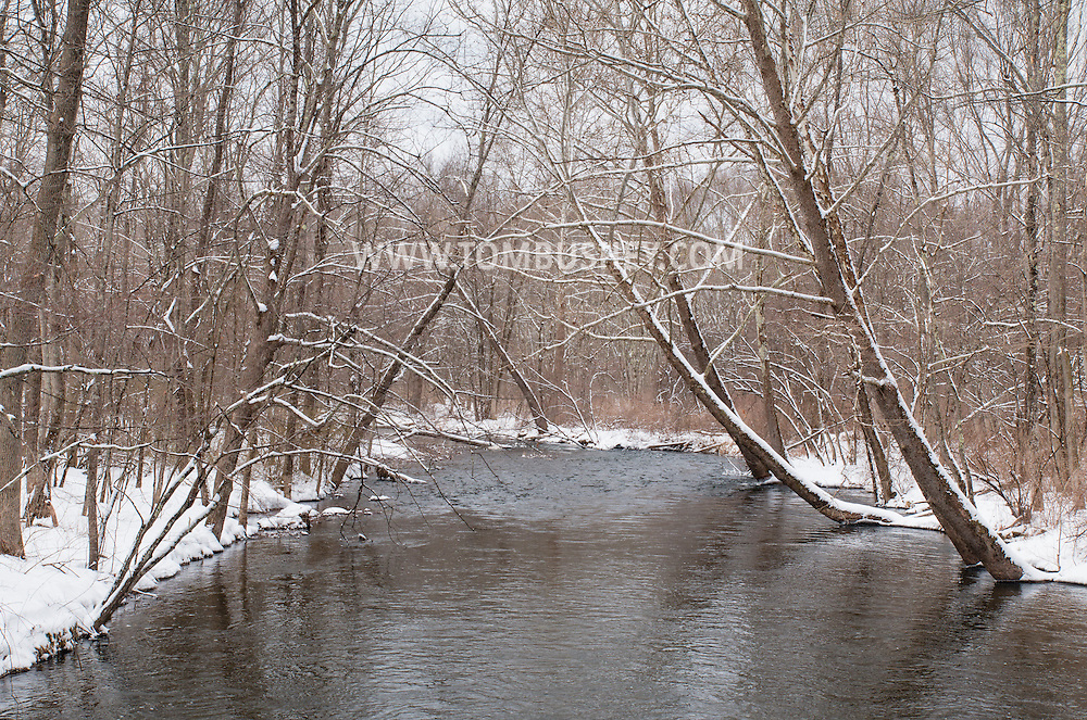 Mamakating, New York - Views of the Bashakill Wildlife Management Area on March 21, 2015.