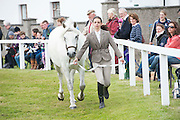 21/09/2014 Scene from the Connemara Pony Show 2014 in Clifden Co. Galway. Photo:Andrew Downes