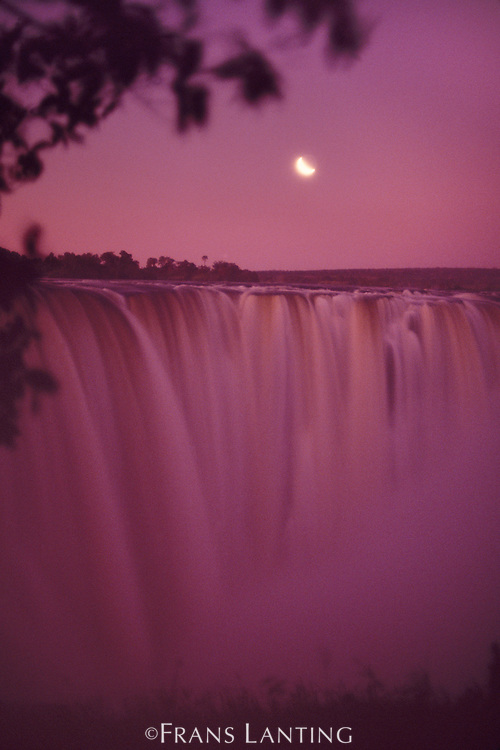 Moonrise over Victoria Falls, Zimbabwe