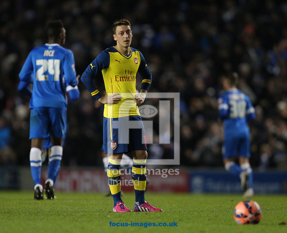 Mesut Ozil of Arsenal looks on during the FA Cup match at the American Express Community Stadium, Brighton and Hove<br /> Picture by Paul Terry/Focus Images Ltd +44 7545 642257<br /> 25/01/2015